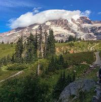 Mt. Rainier, Camp Muir Trail