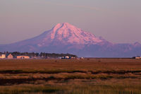 Morning Alpenglow, Mt. Redoubt