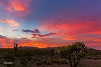 Lost Dutchman SP,  sunset