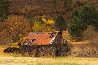 Fall color, derelict building