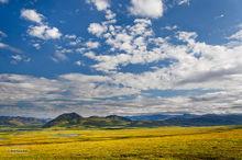Smith Mountains,Dalton Hiway,Alaska