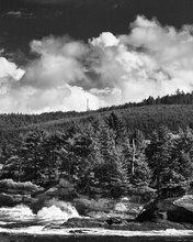 Oregon,coast,surf,clouds,Boiler Bay,conifers
