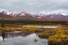 taiga,river,Rainbow Bridge,Old Denali Hiway,Alaska