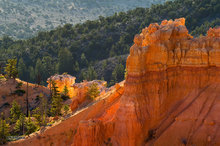Bryce Canyon,Utah,hoodoo,Bryce Point,sunrise,Bryce Amphitheater