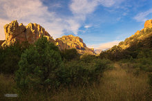 Chiricahua Mountains,Cave Creek Canyon,morning