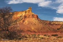 New Mexico,Ghost Ranch,Chimney Rock,snag