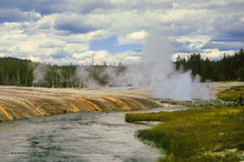 Black Sand Basin,Cliff Geyser,Iron Creek,Yellowstone NP