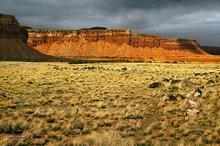 Cooks Mesa,Meeks Mesa,Torrey,Utah