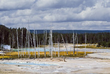 Crackling Lake,Norris Geyser Basin,Yellowstone NP
