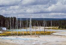 Crackling Lake,Norris Geyser Basin,Yellowstone NP