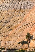 Boulder,Utah,Tabular Cross Bedding