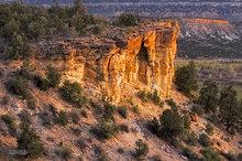 Escalante,Utah,Petrified Forest,desert,textures