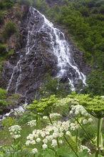 Horsetail Falls,Cow Parsnip,Pushki,Keystone Canyon,Richardson Hiway,Valdez,Alaska