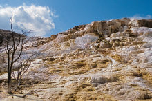 Jupiter Terrace,Mammoth Hot Springs