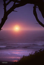 sunset,Kalaloch,Pacific Ocean,Olympic NP