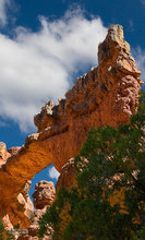 Losee Canyon,Utah