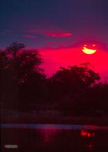 Sunset, Mboma Island, Okavango Delta