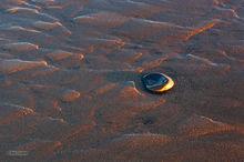 stone,mud flats,Reflections,sunset,abstract,Clam Beach,Kenai Peninsula,Alaska