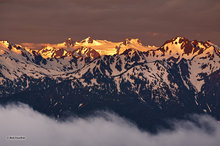 Olympic Mountain Alpenglow