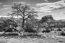 Abiquiu,Ghost Ranch,Orphan Mesa
