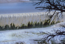 travertine,Mammoth Hot Springs,White Elephant Terrace,Yellowstone NP;limestone