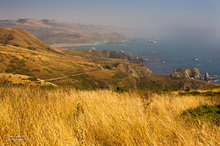 Mendocino,coast,Highway 1,sea stacks,fog,Little River