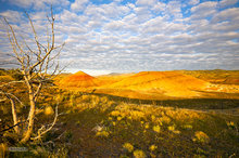 Painted Hills,Oregon,clouds,sunrise,bentonite,popcorn clouds