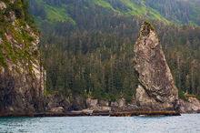 Seastack,Kenai,Fjords NP,Aialik Peninsula,Alaska