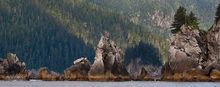 Porcupine Cove,Aialik Peninsula,Kenai,Fjords NP,Alaska