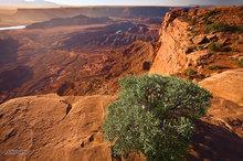 Canyonlands,Dead Horse overlook,sunrise,Pyramid butte