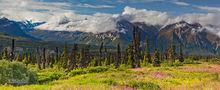 Majestic Valley, Glenn Hiway, Alaska