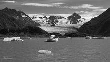 Grewingk Glacier,icebergs,Kenai Mountains,Kenai Peninsula,Alaska