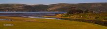 Tomales Bay estuary