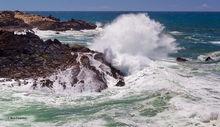 Salt Point SP, surf