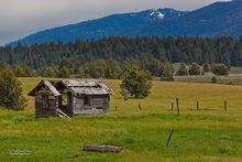 Meadows Valley, derelict building