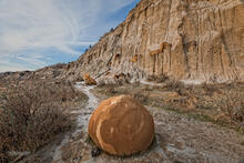 Cannonball Concretion