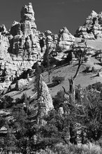 Red Canyon Spires