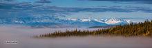 Alaska Range,Tetlin National Wildlife Refuge,Alaskan Hiway,Alaska