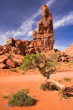 Monument Valley,The Thumb,juniper,clouds