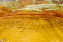 John Day Fossil Beds NM,Painted Hills unit,bentonite