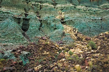 John Day Fossil Beds NM,Sheep Rock unit,Blue Basin,Turtle Cove strata