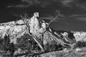 Forked Snag & Chimney Rock