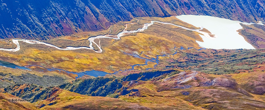 tundra,river,meander,aerial view,Denali NP,Alaska,glacial river,snow-melt river, photo