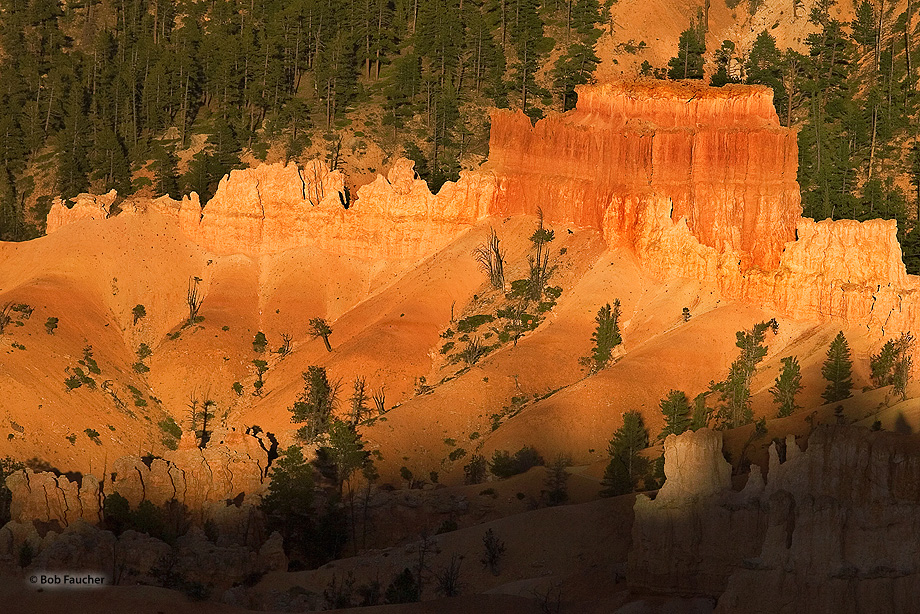 Bryce Canyon,Utah,hoodoo, photo