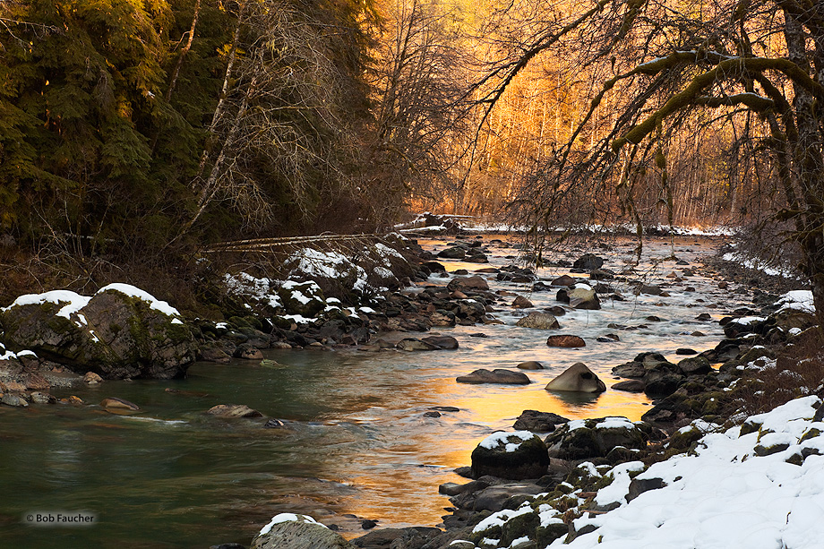Stillaguamish river,south fork,morning light,snow,forest, photo