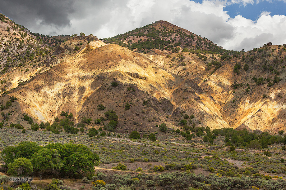 Big Rock Candy Mountain, photo