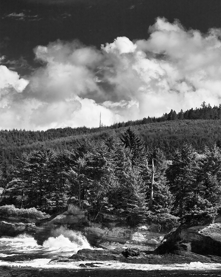 Coniferous forests, under heavy clouds, cover the headlands above Boiler Bay