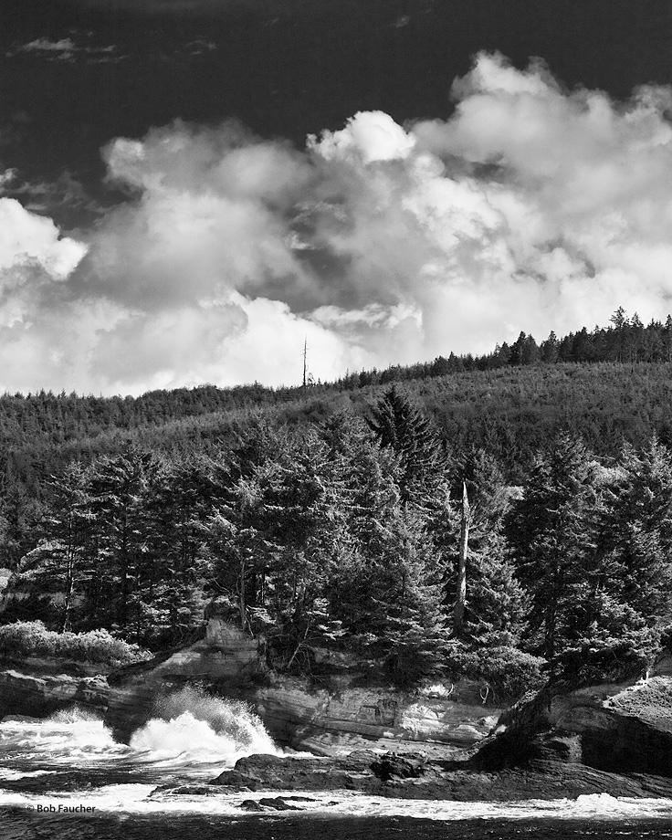 Oregon,coast,surf,clouds,Boiler Bay,conifers, photo
