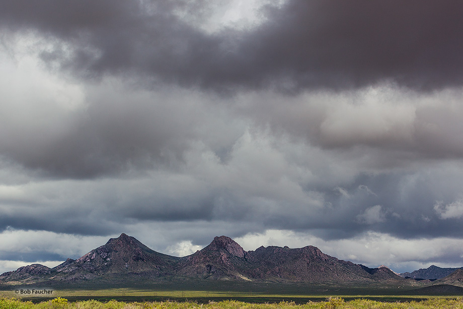 Cookes Peak Wilderness,storm clouds,mountains,Chihuahuan Desert, photo