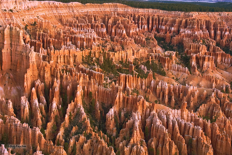 The hoodoos in Bryce Amphitheater, tall skinny spires of rock that protrude from the bottom of arid basins, rise hundreds of...